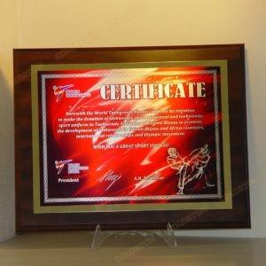 Сертификат Федерации Тхэквондо России участику соревнований