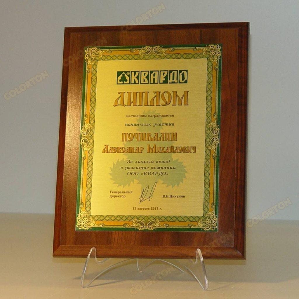 изображение диплома Почивалину Александру