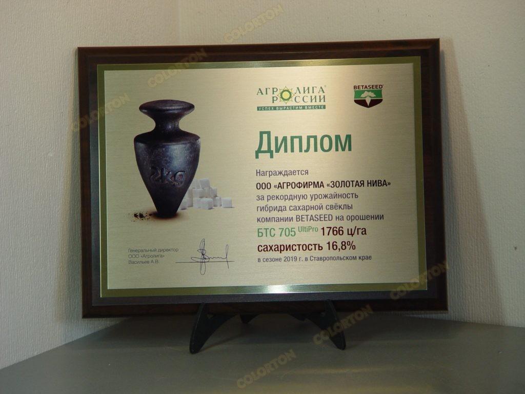 Фото диплома бизнес-партнёру за высокие показатели продукции